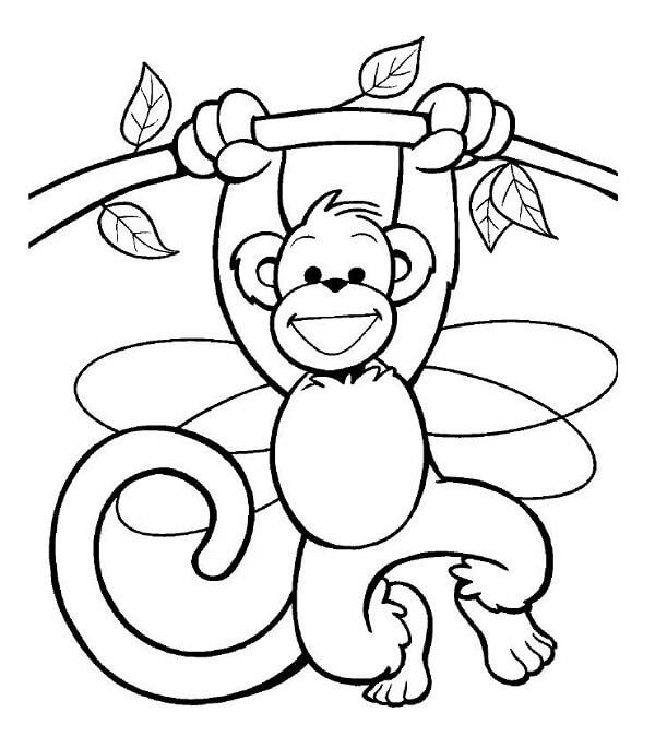 Dinujos de monos para pintar