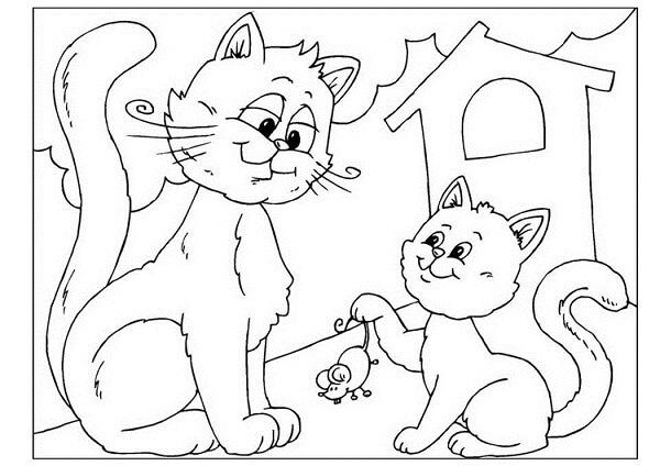 Imagenes de para colorear gatos