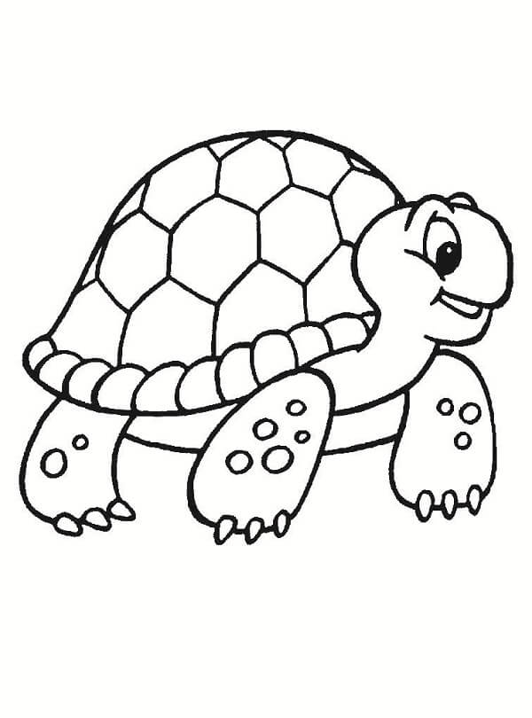dibujos-de-Tortugas-para-pintar.jpg